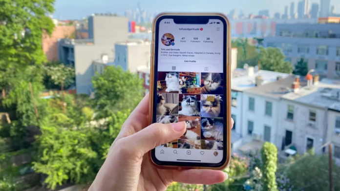 Here Is How To Save Instagram Photos Without Hussle - Ravzgadget