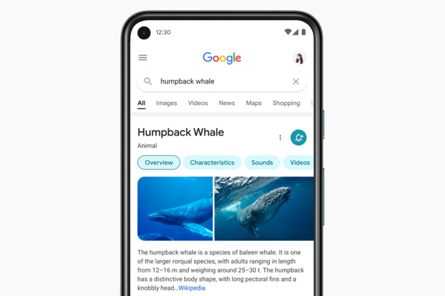 Google Mobile Search Redesign Will Show You Direct Results Only - Ravzgadget